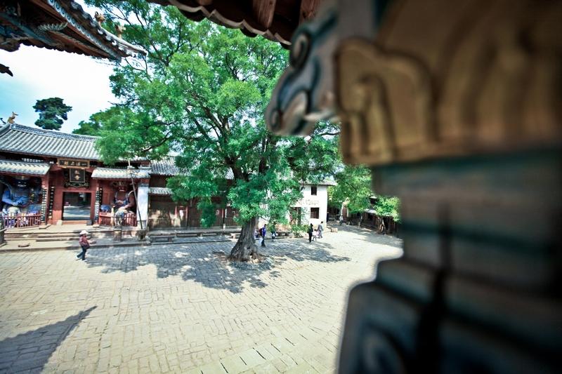 http://zenderphoto.com/files/gimgs/30_neoimg52.jpg