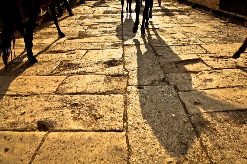 http://zenderphoto.com/files/gimgs/30_neoimg56.jpg